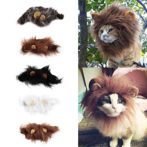Leeuwenkoning Kostuum voor Kat