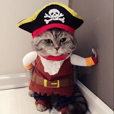 Piratenkostuum voor kat