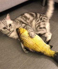 KattenPret.com Homepagina